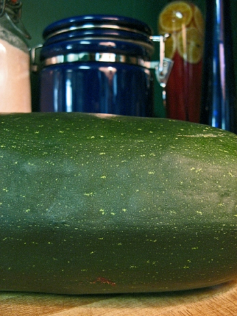 A whale of a zucchini