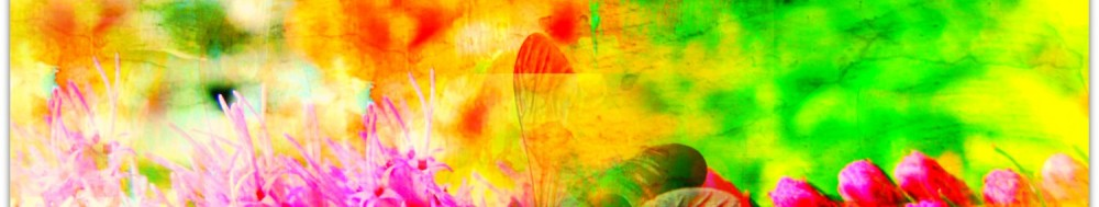 cropped-linkedin-banner2.jpg